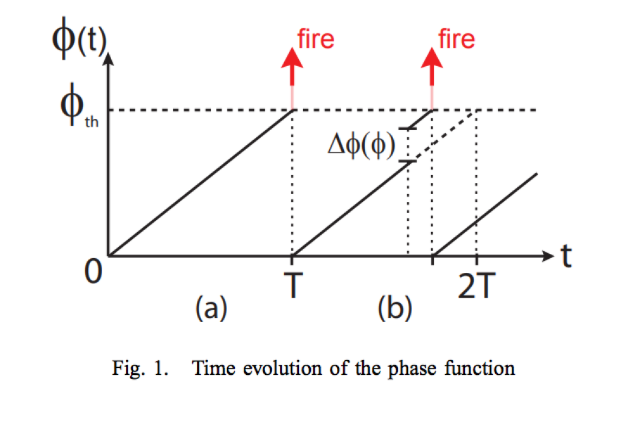 phase function